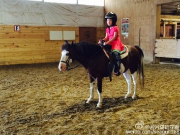 38 Maddie In Horse Riding Class
